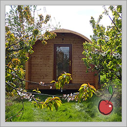 View Our Pods