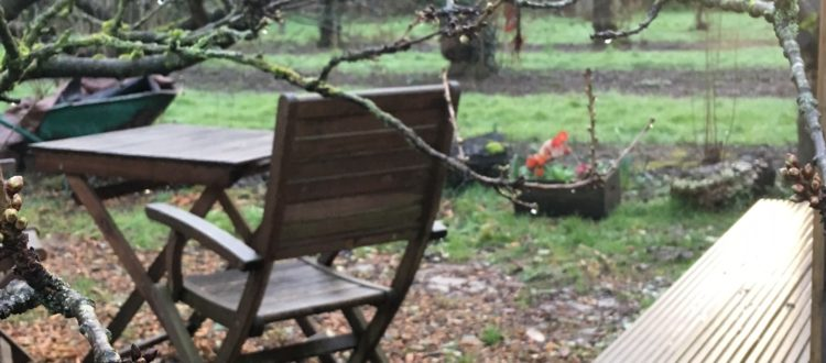 Early River cherry bud outside the pod